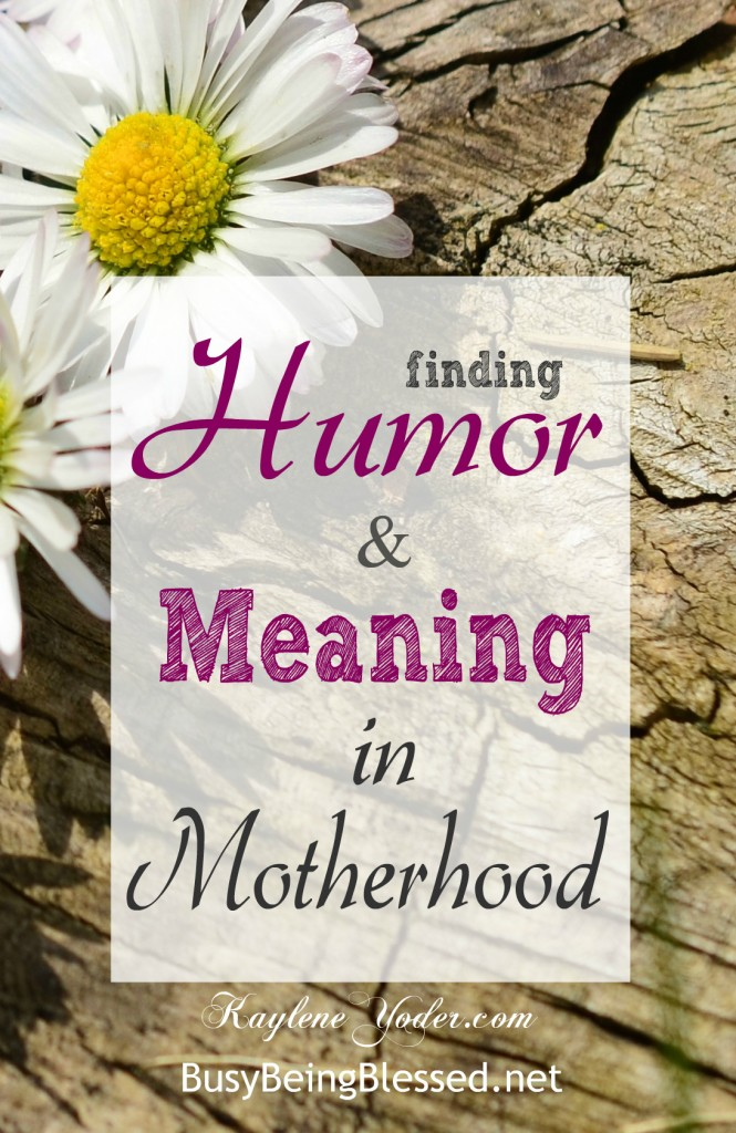 Finding humor and meaning in the chaos of motherhood