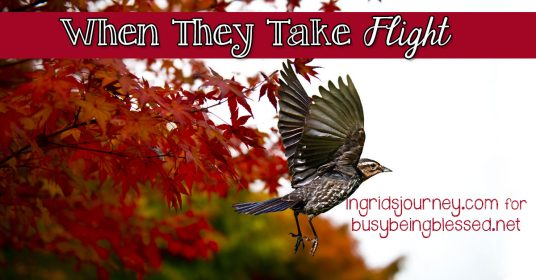 When They Take Flight {Imperfect Moms Day 21}