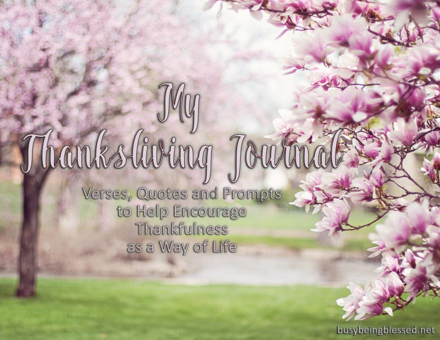 my-thanksliving-journal-cover