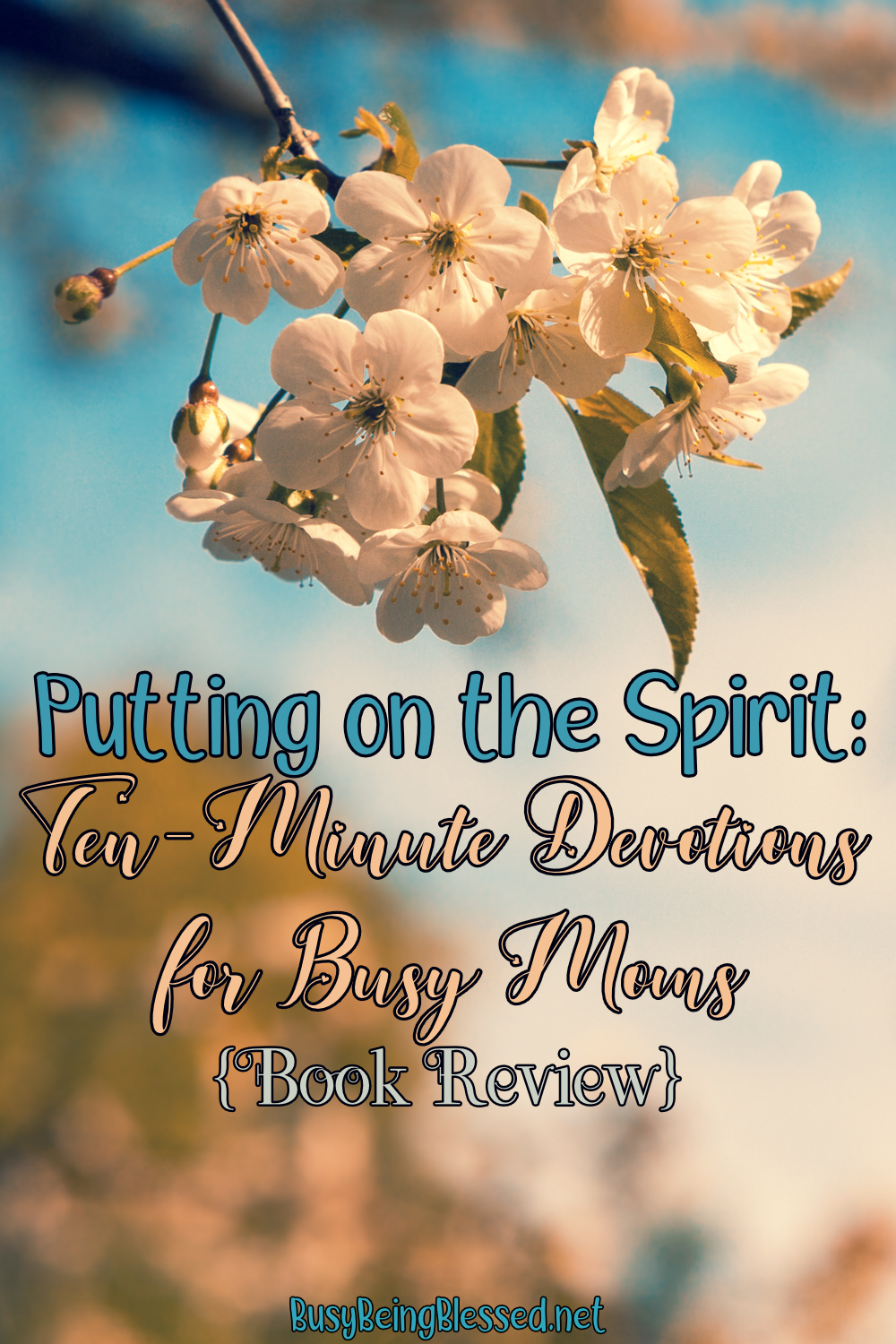 I was thrilled to be able to read and review my friend Katie's compact little devotional Putting on the Spirit: 10 Minute Devotions for Busy Moms. It sounded right up my alley! 10 minutes is just the right amount of time for me, usually!